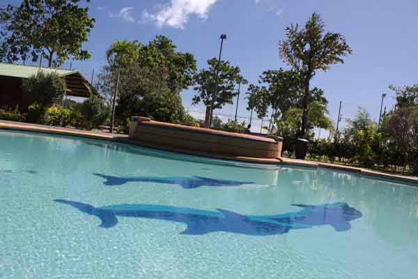 Swimming Pool Cebu at Haruhay Dream Resort - Ideal for Scuba Divers