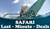 Last Minute Dive Safaris Cebu